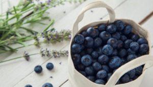 a basket of blueberry